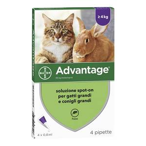 ADVANTAGE*4PIP 0,8ML SPOTON